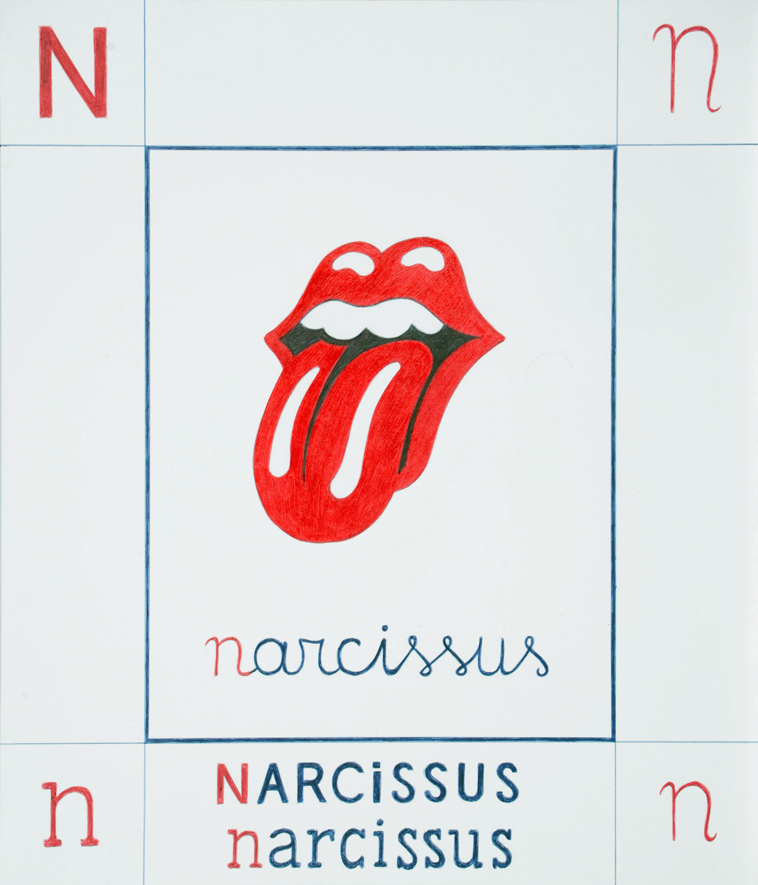 08N-narcissus_bassa